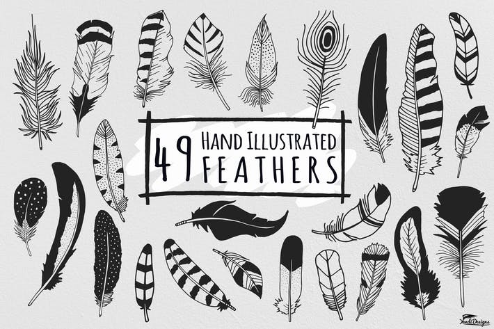 Thumbnail for Hand Illustrated Feathers