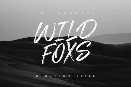 Wild Foxs