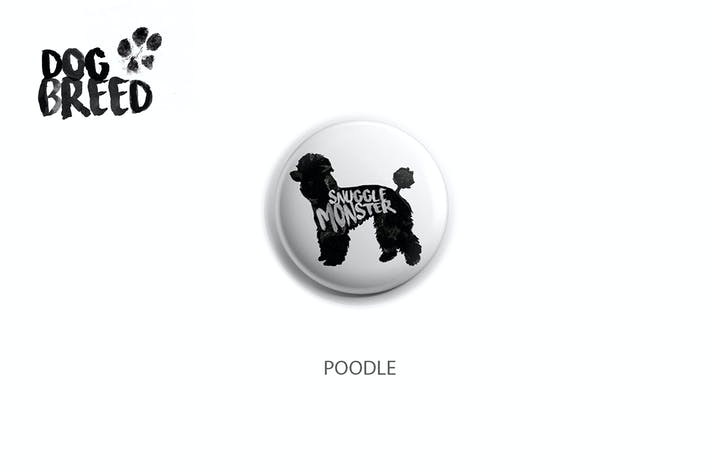 Thumbnail for Poodle