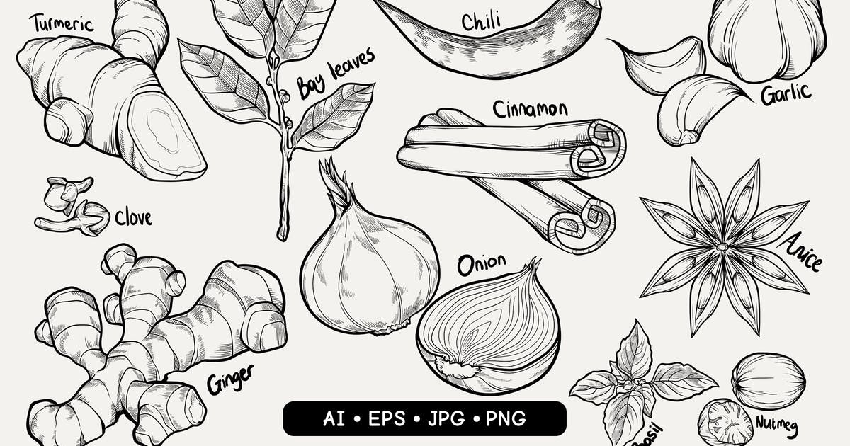 Download Hand Drawn Spices by slabdsgn