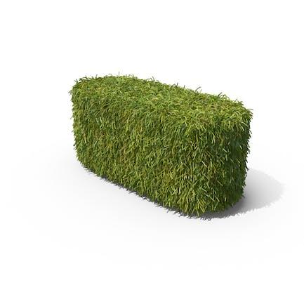 Grass Dash Symbol