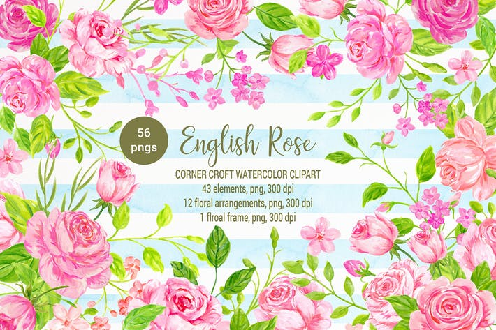 Thumbnail for Watercolor Clipart English Rose