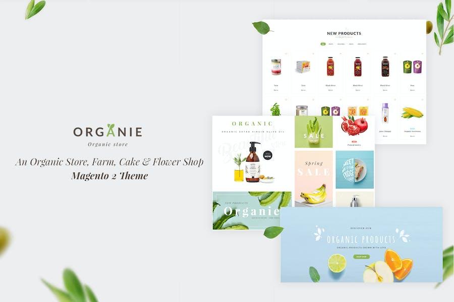 Organie - Organic Store, Farm, Cake, Flower Theme