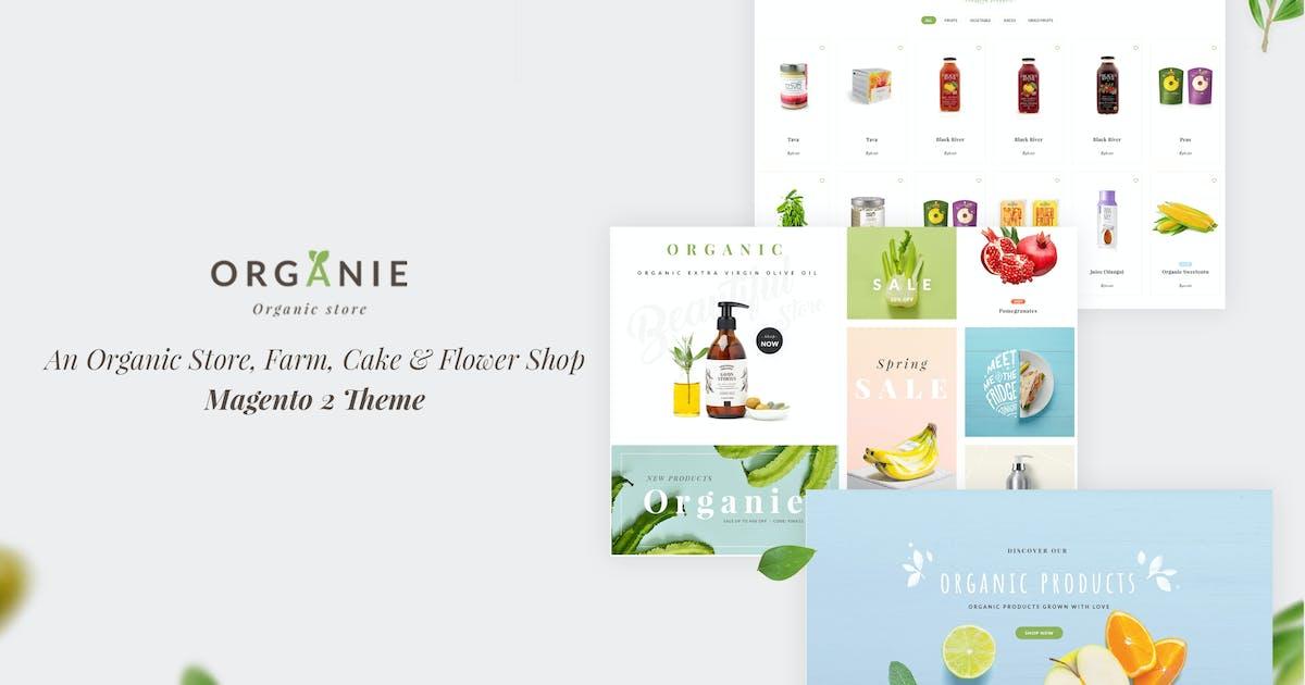 Download Organie - Organic Store, Farm, Cake, Flower Theme by ArrowHiTech