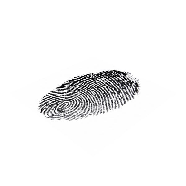 Thumbnail for Fingerprint