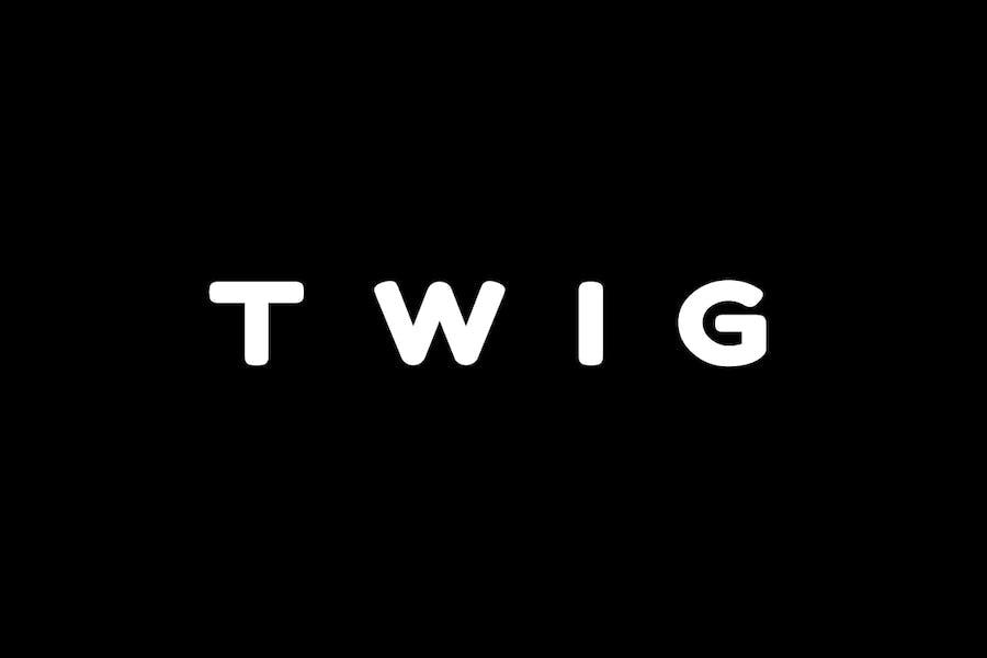 TWIG - Unique Display / Headline / Logo Typeface