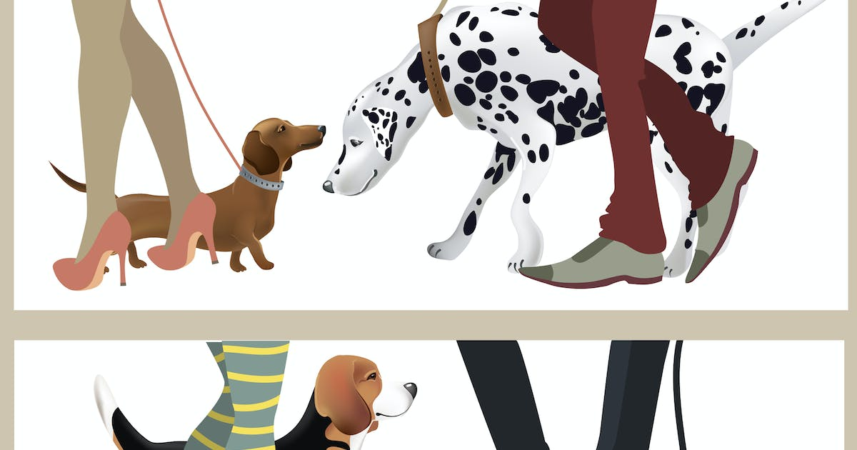Download Cute dogs with their owners. Vector illustration by masastarus