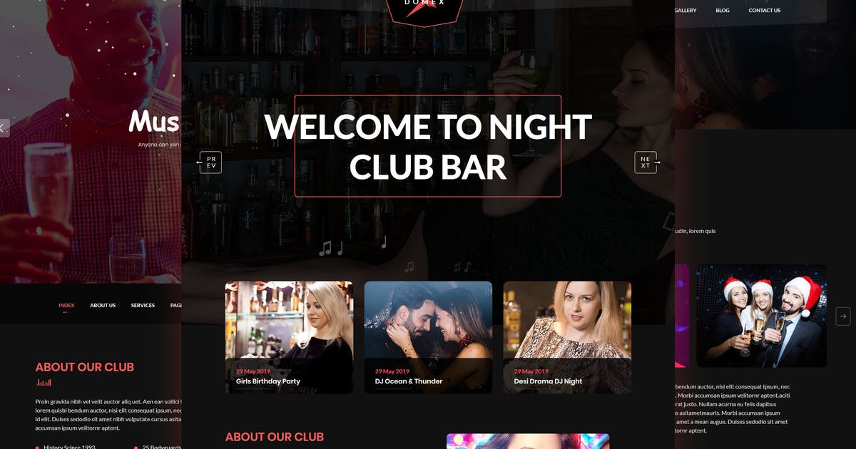 Download Domex - Night Club WordPress Theme by shtheme