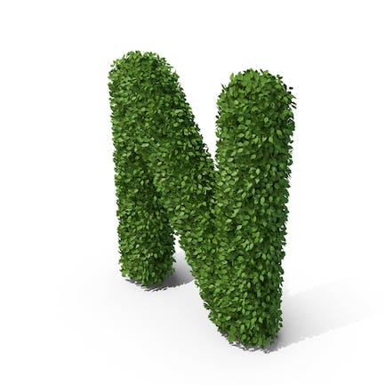 Letra n en forma de seto