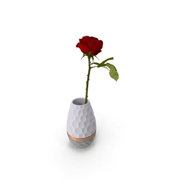 Hexagon Vase with Rose