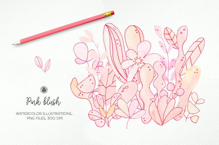 Thumbnail for Pink Blush Flowers