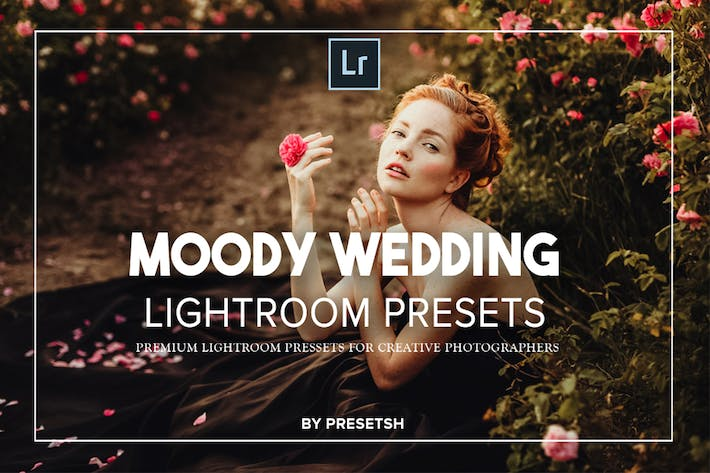 Thumbnail for Moody Wedding Lightroom Presets