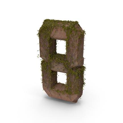 Piedra antigua con hiedra número 8