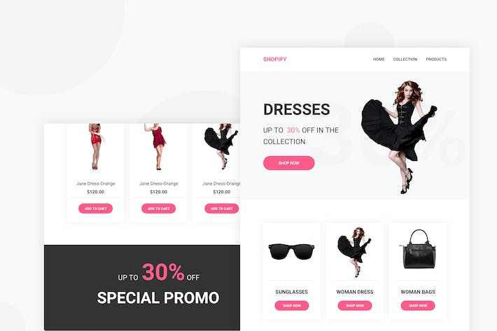 Thumbnail for Shopify - Email Newsletter