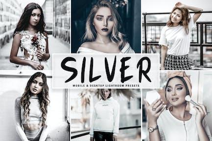Silver Mobile & Desktop Lightroom Presets