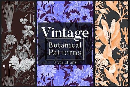 Vintage Botanical Patterns