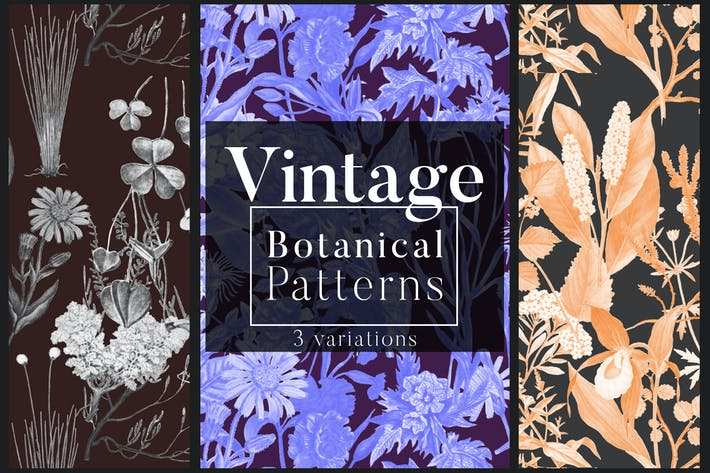 Thumbnail for Vintage Botanical Patterns