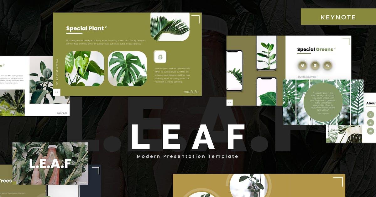 Download Leaf - Keynote Template by vincentllora
