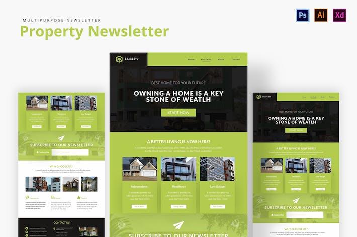Thumbnail for Property Newsletter