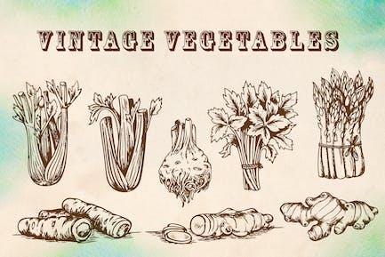 Vegetales Vintage