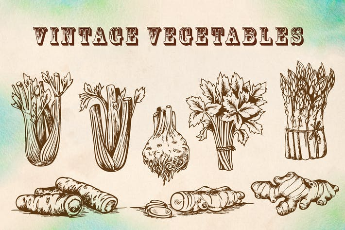 Thumbnail for Vintage Vegetables