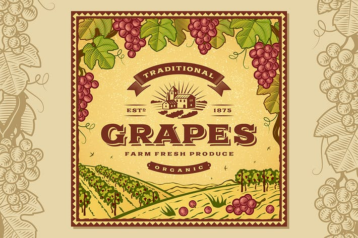 Cover Image For Vintage Grapes Label