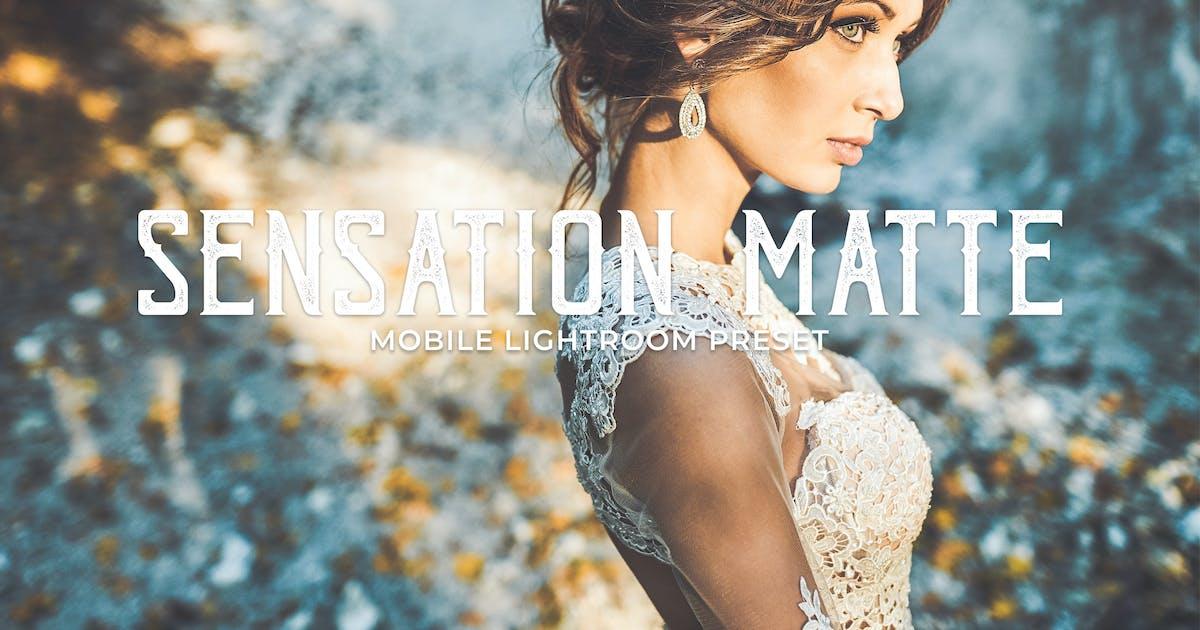 Sensation Matte Mobile Lightroom Presets by creativetacos