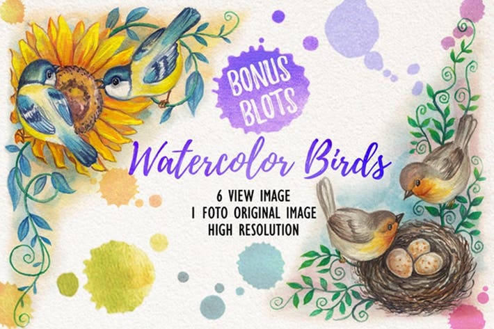 Thumbnail for Aquarelle Oiseaux