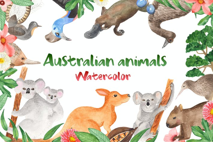 Thumbnail for Watercolor Australian animals and plants