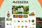 Vegeda - Vegetables And Organic Food Shopify Theme
