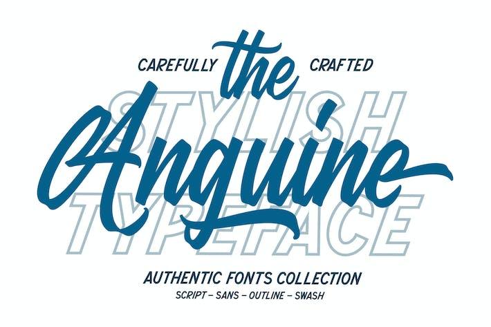 Thumbnail for Anguine - Police de caractères élégante