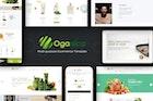 Organica - Responsive WooCommerce WordPress Theme