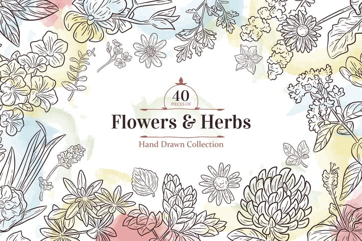 Thumbnail for Hand drawn flowers elements collection