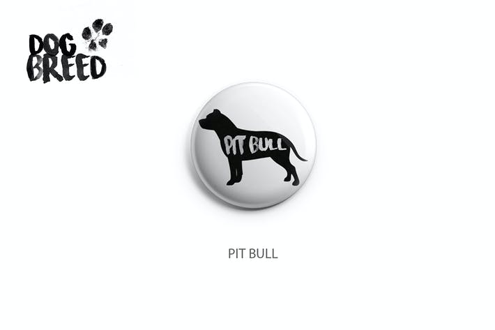 Cover Image For Pitbull