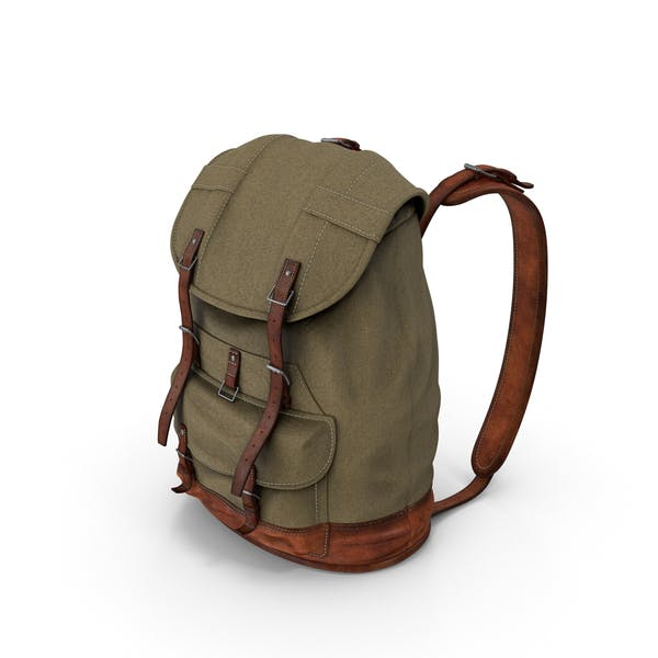 Cover Image for Travel Backpack
