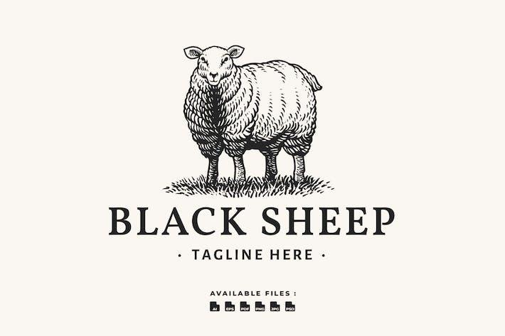 Thumbnail for Black Sheep Handrawn Logo