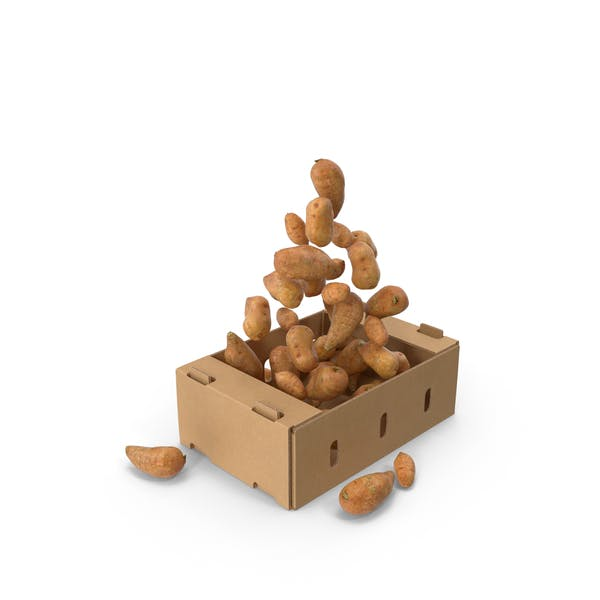 Thumbnail for Cardboard Box With Sweet Potatoes Flying