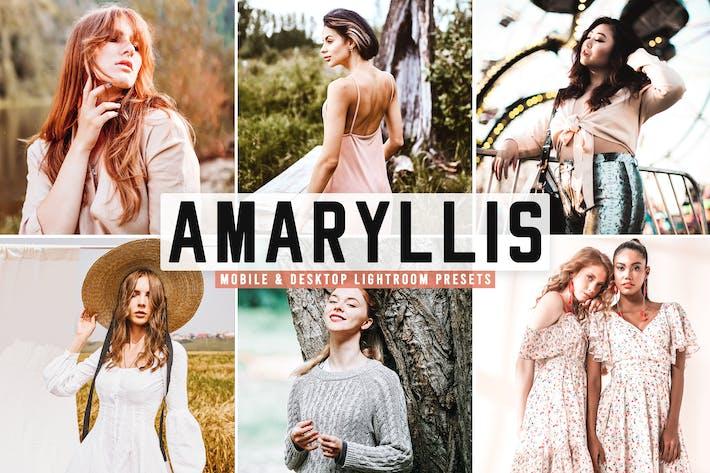 Thumbnail for Amaryllis Mobile & Desktop Lightroom Presets