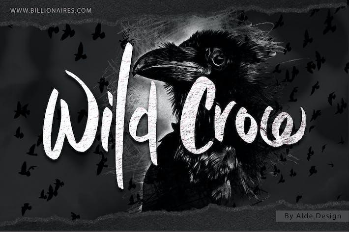 Corbeau sauvage