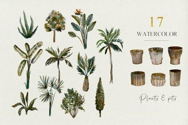 17 Tropical plants and pots - watercolor set