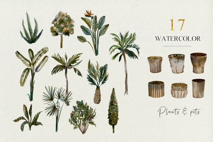 Thumbnail for 17 Tropical plants and pots - watercolor set