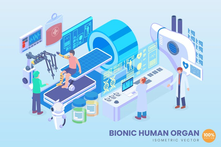 Thumbnail for Isometric Bionic Human Organ Vector Concept