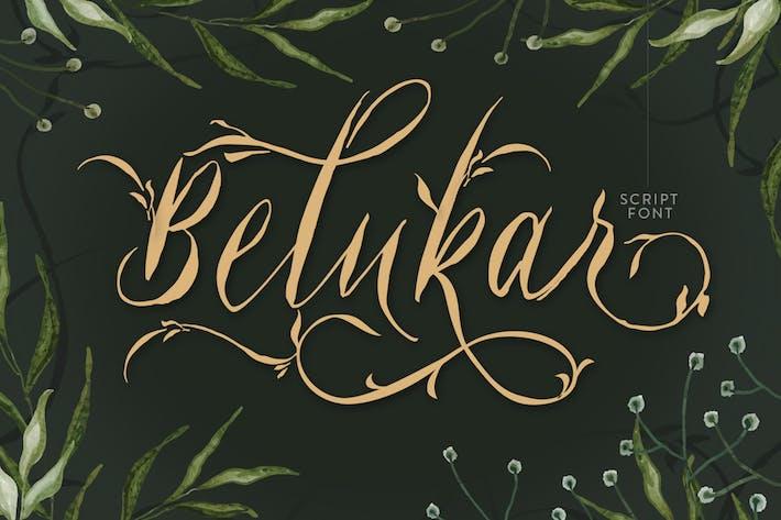 Belukar - Script de visualización único