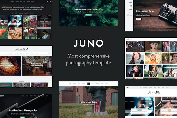 Thumbnail for Juno - Photography & Magazine Site Template
