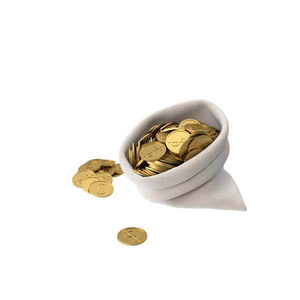 Bag of Gold Coins