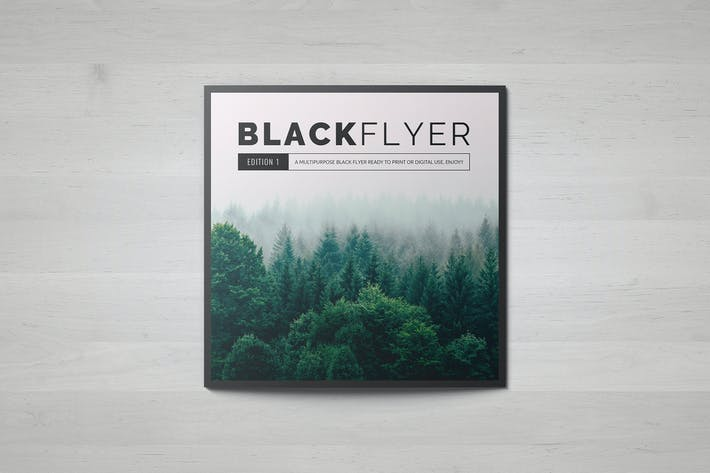 Cover Image For BlackFlyer Square Trifold