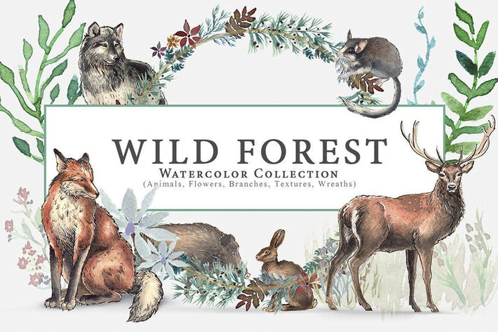 Thumbnail for Wild Watercolor Forest Animals