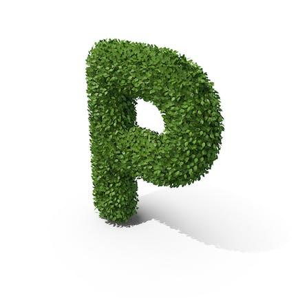 Letra en forma de seto p