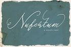 Nufertum