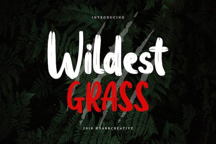 Thumbnail for Wildest Grass